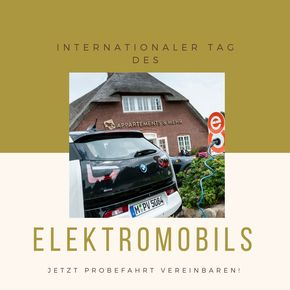 INTERNATIONALER TAG DES ELEKTROMOBILS  - Bild 1